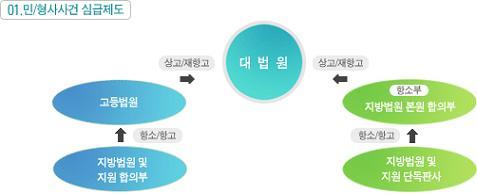 상소의 종류 및 구조
