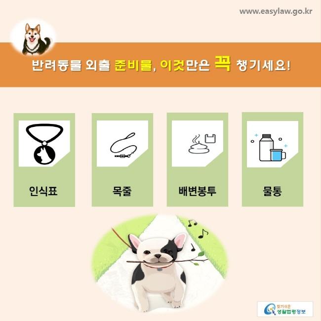 반려동물 외출 준비물, 이것만은 꼭 챙기세요! 인식표, 목줄, 배변봉투, 물통