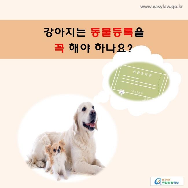 강아지는 동물등록을 꼭 해야 하나요?