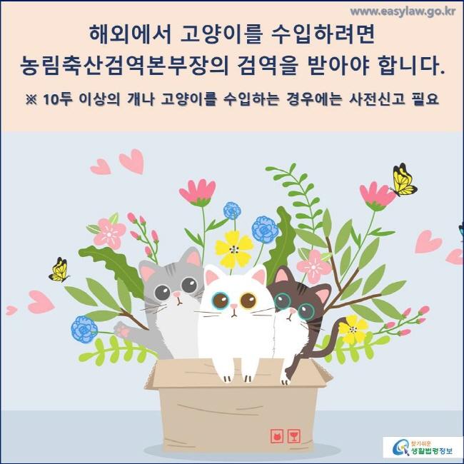 해외에서 고양이를 수입하려면 농림축산검역본부장의 검역을 받아야 합니다.  ※ 10두 이상의 개나 고양이를 수입하는 경우에는 사전신고 필요