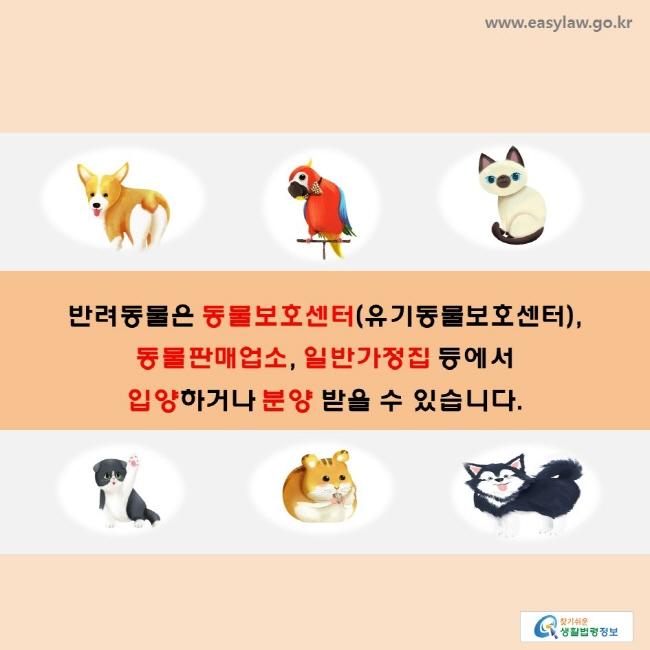 반려동물은 동물보호센터(유기동물보호센터), 동물판매업소, 일반가정집 등에서 입양하거나 분양 받을 수 있습니다.