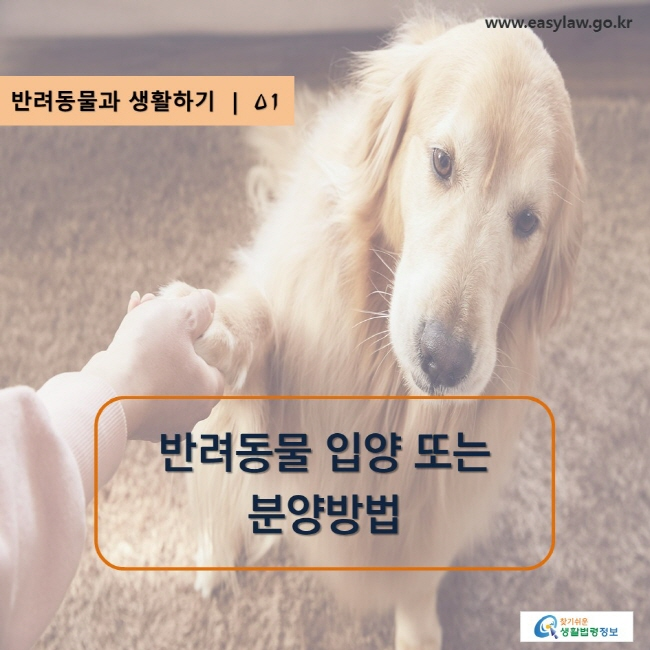 www.easylaw.go.kr, 찾기 쉬운 생활법령정보 로고, 반려동물과 생활하기 | 01, 반려동물 입양 또는 분양방법