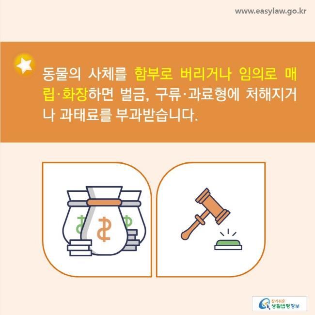 동물의 사체를 함부로 버리거나 임의로 매립·화장하면 벌금, 구류·과료형에 처해지거나 과태료를 부과받습니다.