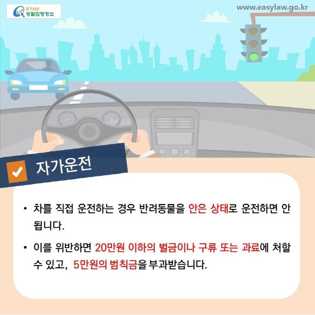 자가운전,  • 차를 직접 운전하는 경우 반려동물을 안은 상태로 운전하면 안 됩니다. • 이를 위반하면 20만원 이하의 벌금이나 구류 또는 과료에 처할 수 있고, 5만원의 범칙금을 부과받습니다.