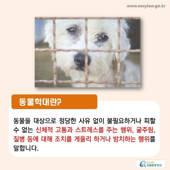 동물학대란? 동물을 대상으로 정당한 사유 없이 불필요하거나 피할 수 없는 신체적 고통과 스트레스를 주는 행위, 굶주림, 질병 등에 대해 조치를 게을리 하거나 방치하는 행위를 말합니다.